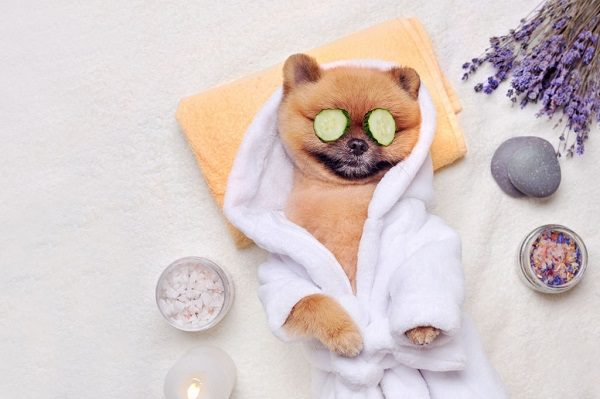 Rửa Mặt Đúng Cách Giảm Stress