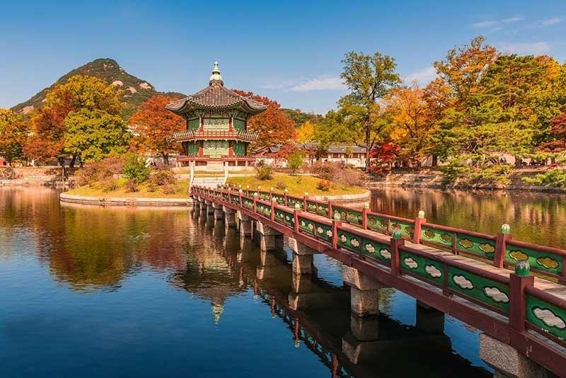 Hình Ảnh Mùa Thu Hàn Quốc Đẹp 4