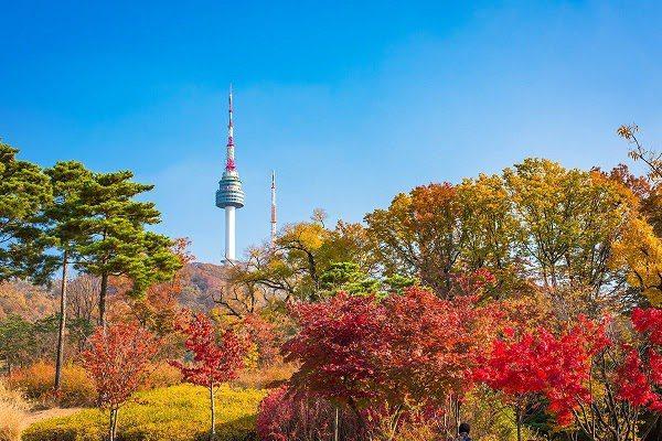 Hình Ảnh Mùa Thu Hàn Quốc Đẹp 5
