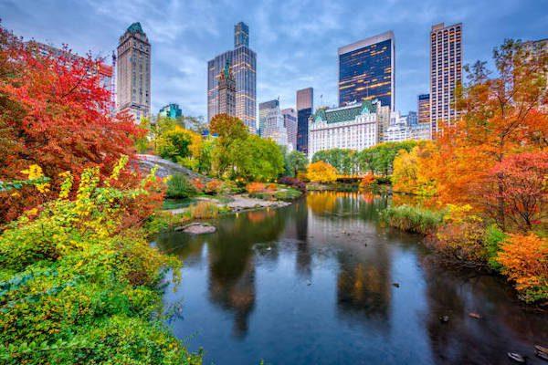Hình Ảnh Mùa Thu Newyork Đẹp 5