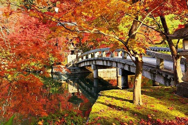 Hình Ảnh Mùa Thu Đẹp Nhật Bản 2