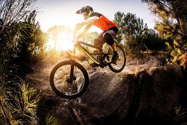 Xe Đạp Địa Hình (Mountain Bike)