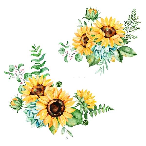 Hình Ảnh Hoa Hướng Dương Đẹp 9