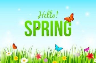 Mùa xuân - Mùa của sự khởi đầu