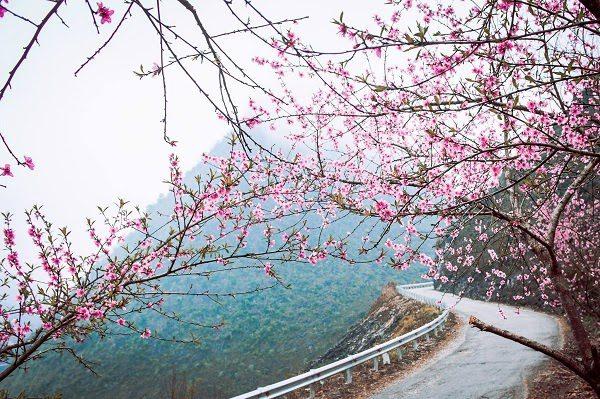 Cung Đường Mùa Xuân Ở Tây Bắc