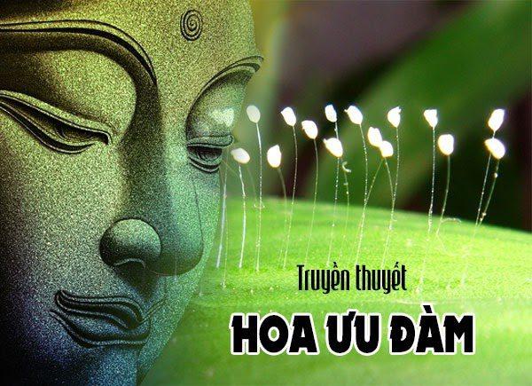 Sự Tích Phật Câu Na Hàm