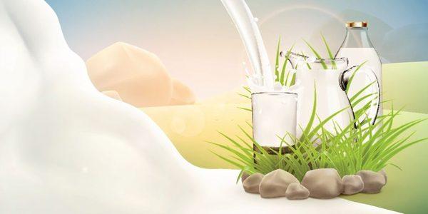 Bữa Sáng Eat Clean Với Sữa Tách Béo