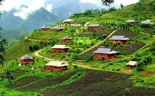 Cảnh Đẹp Việt Nam Bản Tả Thìn