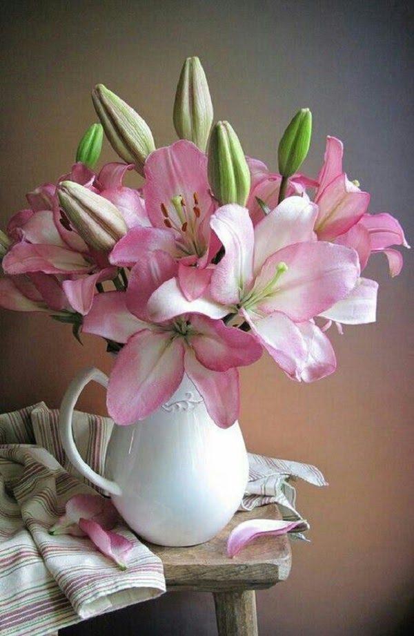 Hình Ảnh Hoa Ly Đẹp 17