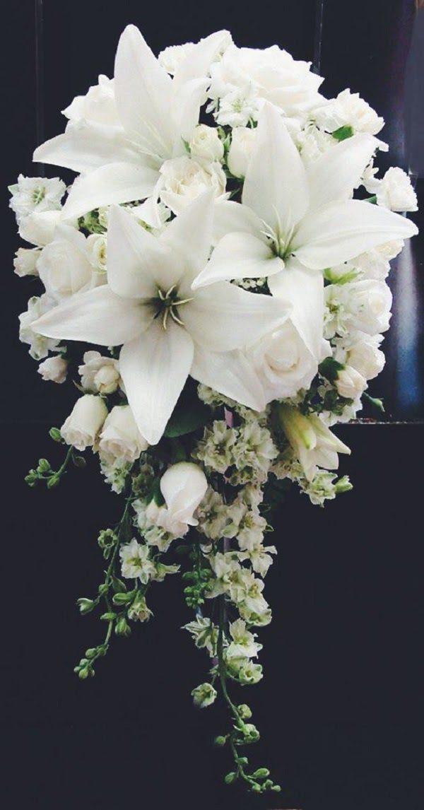Hình Ảnh Hoa Ly Đẹp 18