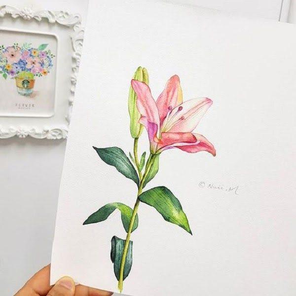 Hình Ảnh Hoa Ly Đẹp 19