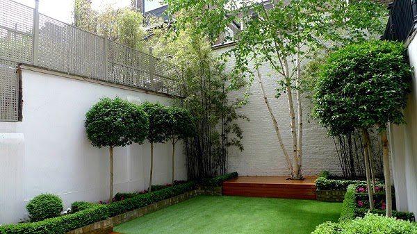 Sân Vườn Đẹp Với Cây Xanh 3