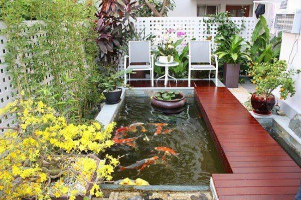 Sân Vườn Với Bể Cá 6