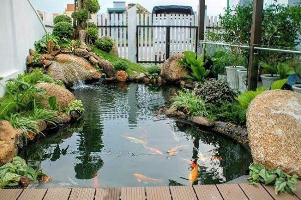 Sân Vườn Với Bể Cá 8