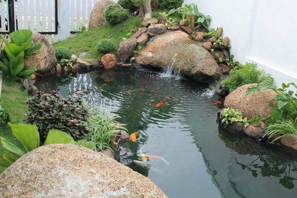 Sân Vườn Với Bể Cá 9