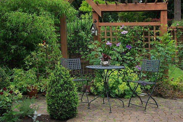Sân Vườn Với Cây Xanh 9