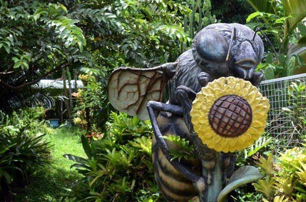 Tiểu Cảnh Sân Vườn Đẹp 1