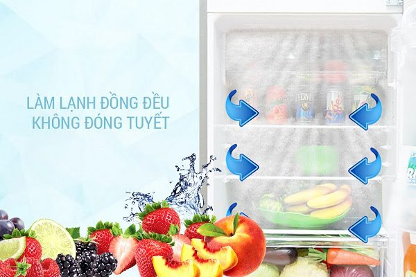 Tủ Lạnh Sj-X281E-Ds Của Thương Hiệu Sharp Ứng Dụng Chức Năng
