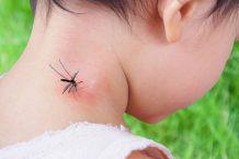 Các biểu hiện, triệu chứng nhận biết sốt xuất huyết ở trẻ em