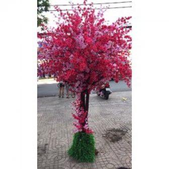 Hoa Anh Đào - Hoa Giả ,Hoa Lụa