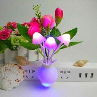 Đèn Ngủ Chậu Hoa Cây Nấm