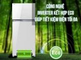 Top Tủ Lạnh Toshiba Đáng Mua Nhất 2021