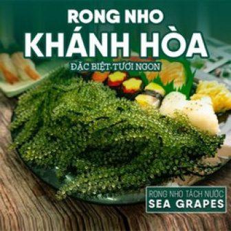 Rong Nho Tách Nước Khánh Hòa Sea Grapes 25G